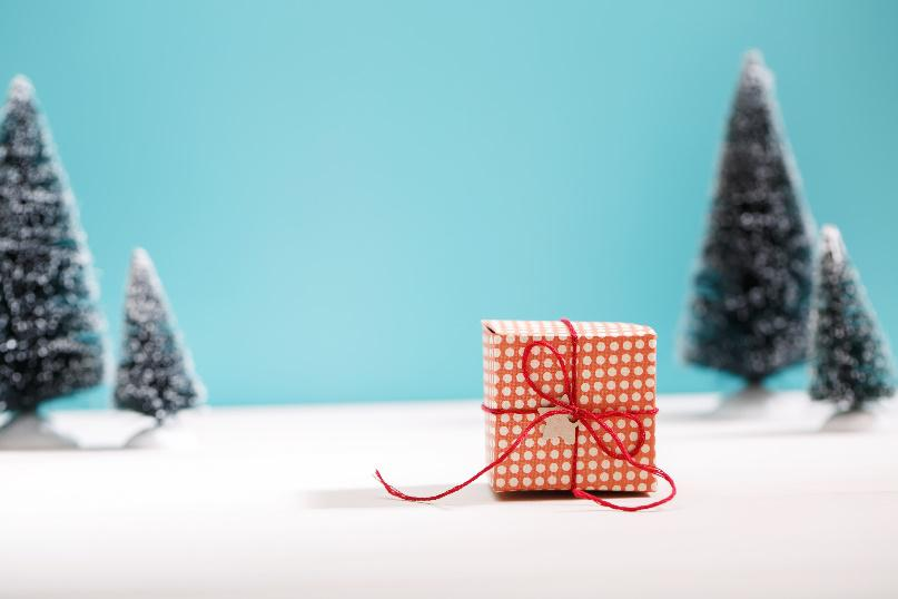 Swagtastic holiday gift ideas for your customers for Customer holiday gift ideas